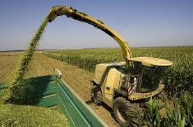 agrarnibudzet